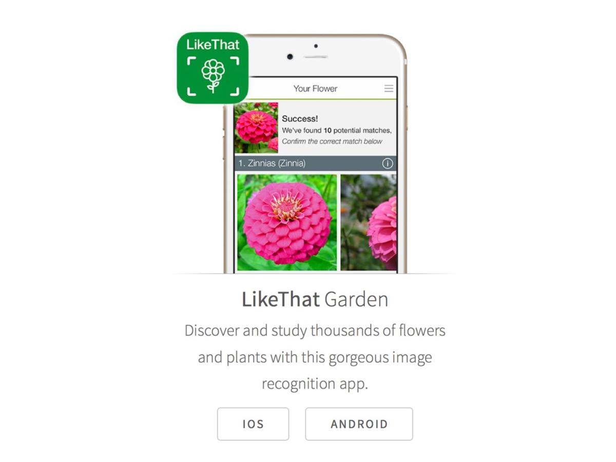 LikeThat Garden – Flower Identification App